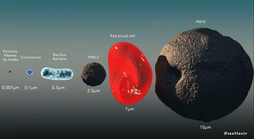 Size Comparison of the Coronavirus